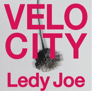 Ledy-Joe.jpg