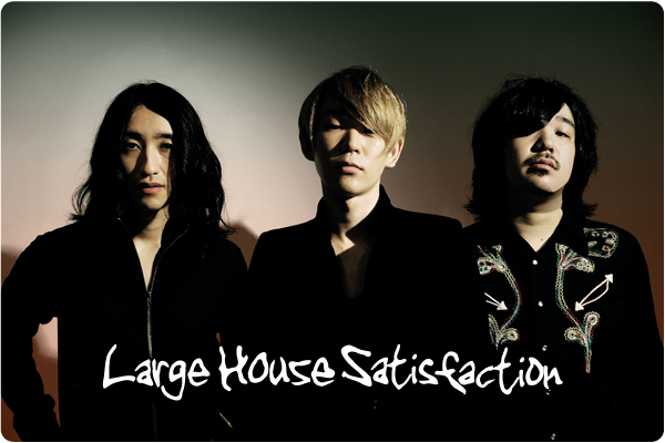 Large House Satisfaction interview