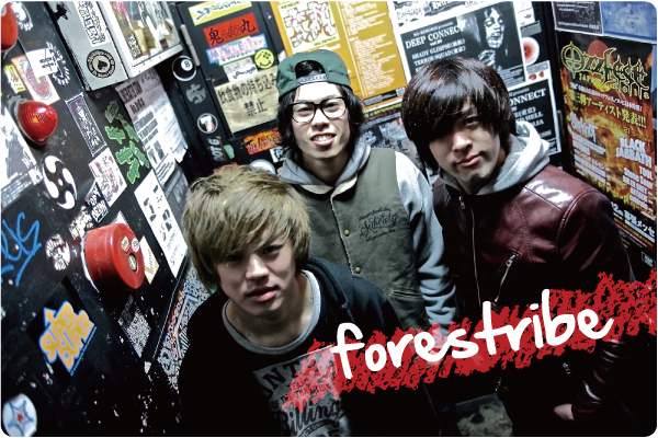 forestribe interview