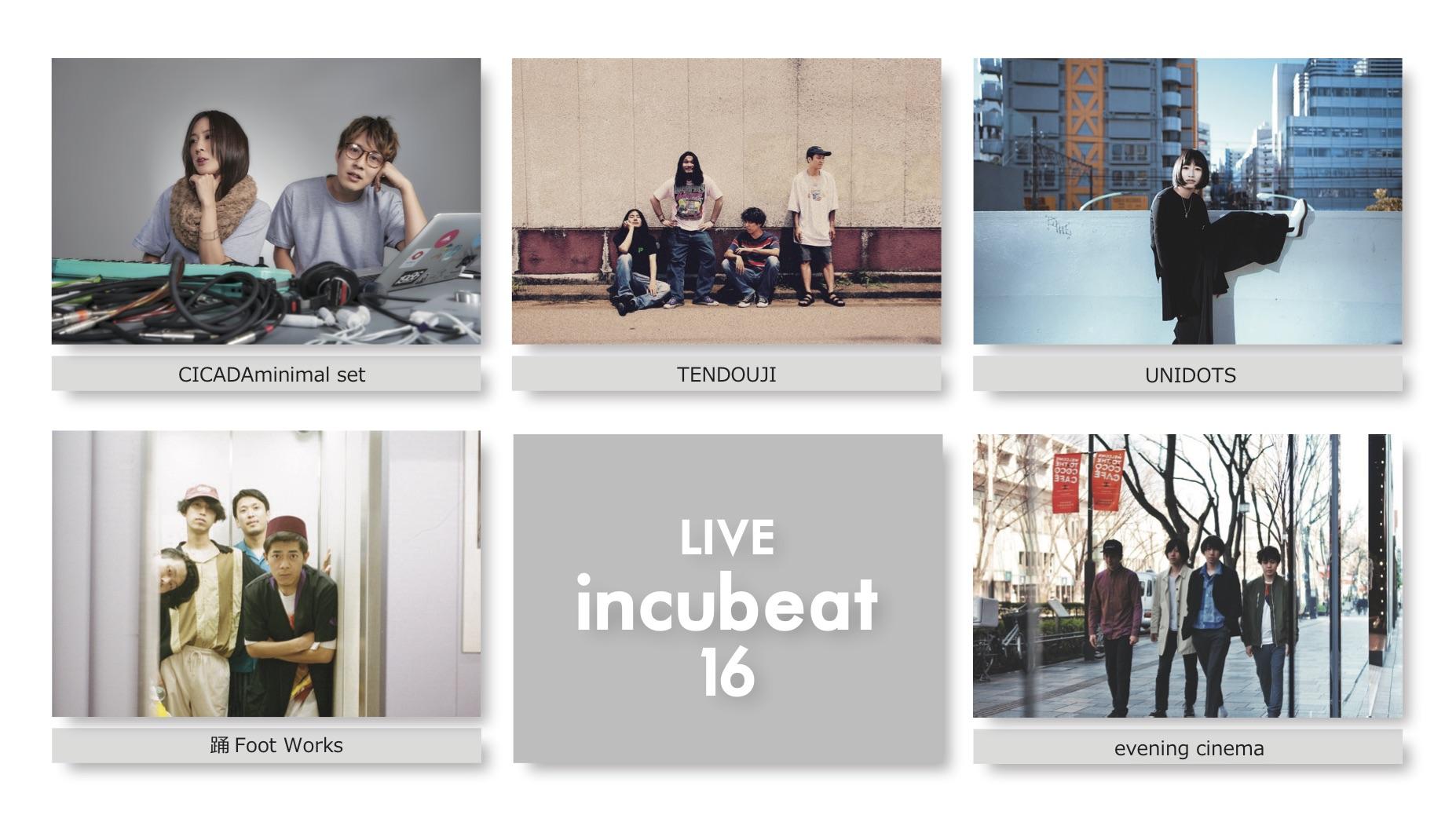 Live incubeat 16